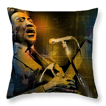 Muddy Waters Throw Pillow by Paul Sachtleben