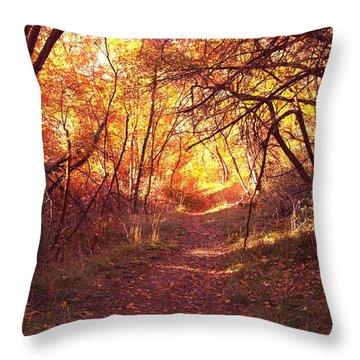 Mueller Park In The Fall Throw Pillow