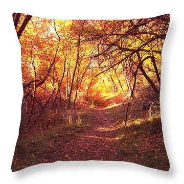 Mueller Park In The Fall Throw Pillow