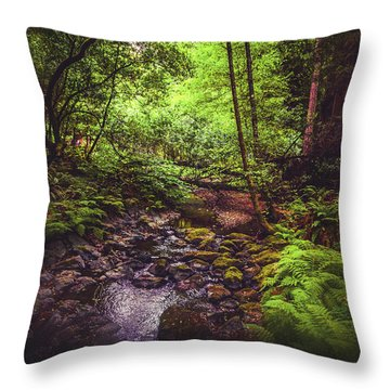 Throw Pillow featuring the photograph Muir Woods No. 3 by Laura DAddona