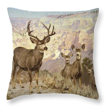 Mule Deer In The Badlands, Dawson County, Montana Throw Pillow