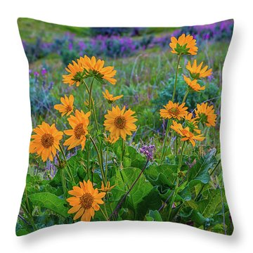 Mule's Ear And Lupine Throw Pillow
