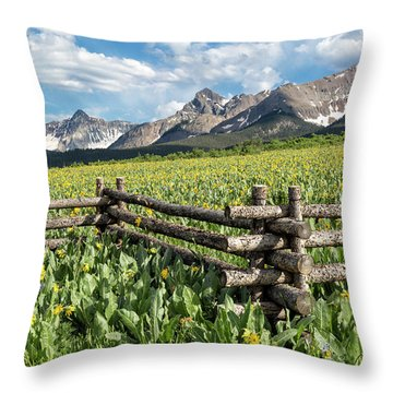 Mule's Ears And Mountains Throw Pillow