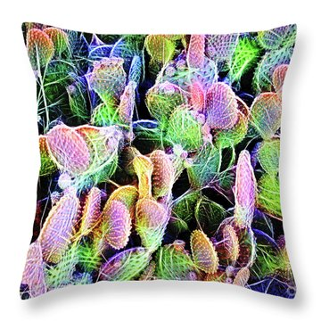 Multi-color Artistic Beaver Tail Cactus Throw Pillow by Linda Phelps