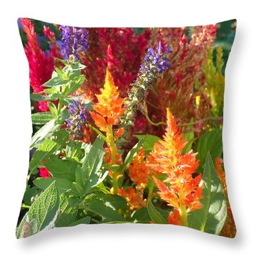 Multi-color Energy Throw Pillow