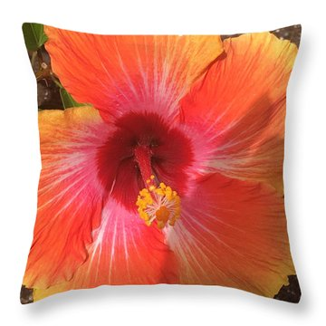 Multi-colored Beauty Throw Pillow