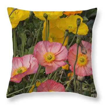 Multicolor Poppies Throw Pillow