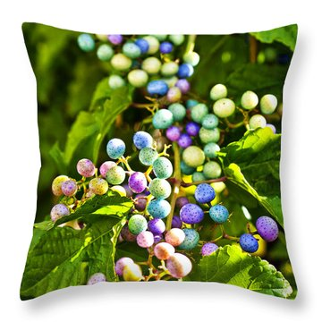 Multicolored Berry Vine Throw Pillow