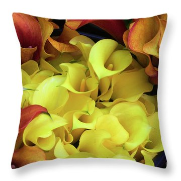 Multicolored Calla Lillies Throw Pillow