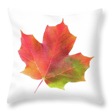 Multicolored Maple Leaf Throw Pillow by Jim Hughes