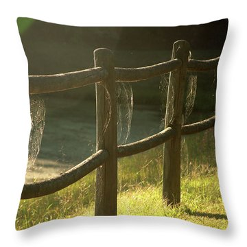 Multiple Spiderwebs On Wooden Fence Throw Pillow by Emanuel Tanjala