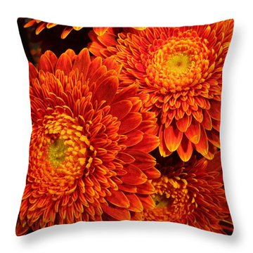 Mums In Flames Throw Pillow