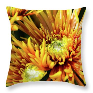 Mum's The Word II Throw Pillow