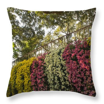 Throw Pillow featuring the photograph Mum's The Word by Julie Andel