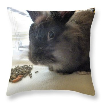 Throw Pillow featuring the photograph Munchkin by Denise Fulmer