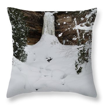 Munising Frozen Throw Pillow by Michael Peychich