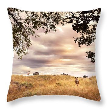 Munson Morning Throw Pillow