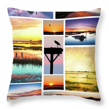 Throw Pillow featuring the photograph Mural 1 Carolina In The Morning by Jo Ann Tomaselli