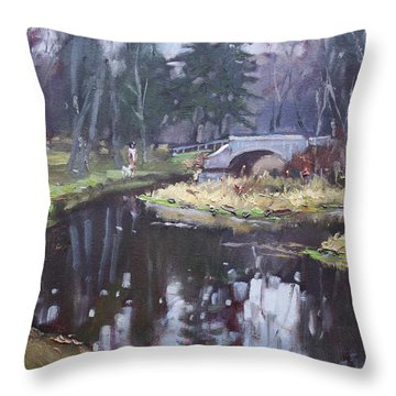 Murder Creek Ny Throw Pillow