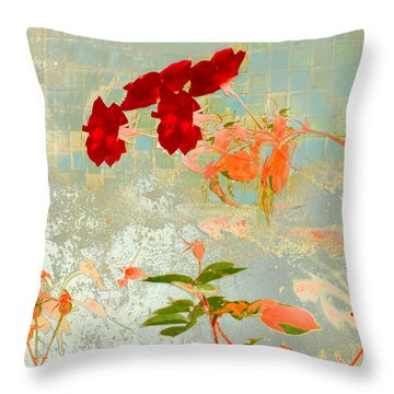 Muro Viejo Throw Pillow