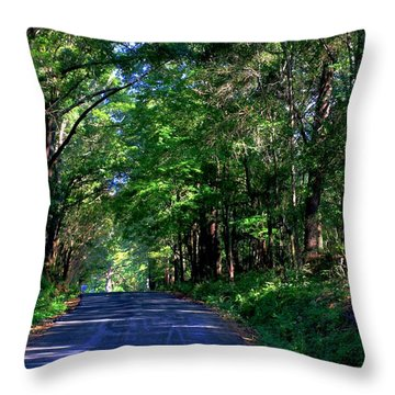 Murphy Mill Road - 2 Throw Pillow