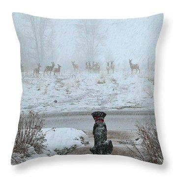 Murphy Watches The Deer Throw Pillow