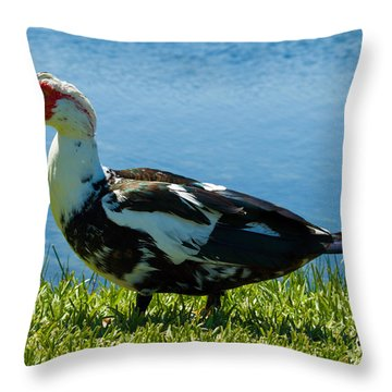 Muscovy Ducks Are Butt-ugly Throw Pillow by Allan  Hughes