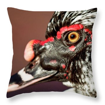 Throw Pillow featuring the photograph Muscovy by Sue Collura