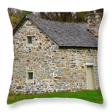 Museum Of Indian Culture Throw Pillow by Jeannie Rhode