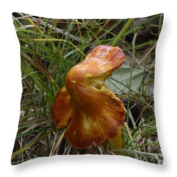 Throw Pillow featuring the photograph Mushroom In Grass by Paul Freidlund