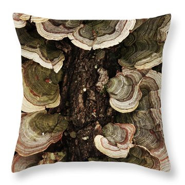 Throw Pillow featuring the photograph Mushroom Shells By The Lake Shore by Kim Henderson