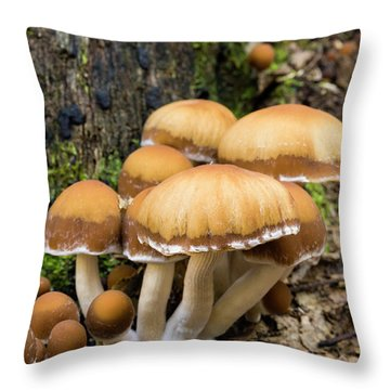 Throw Pillow featuring the photograph Mushrooms - D009959 by Daniel Dempster