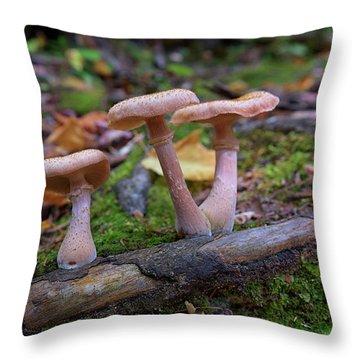Mushrooms On Katahdin Throw Pillow