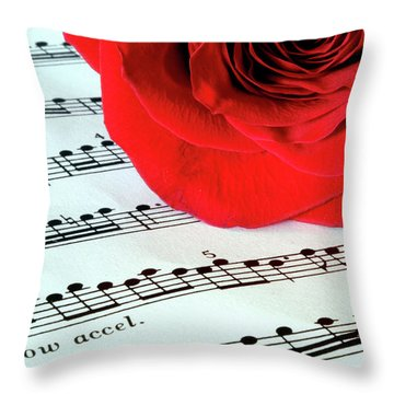 Music Lover  Throw Pillow