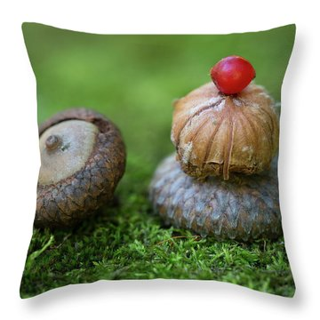 Throw Pillow featuring the photograph Musing With Nature by Dale Kincaid