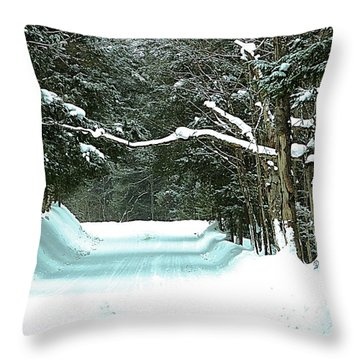 Throw Pillow featuring the photograph Muskoka Wonderland by Al Fritz