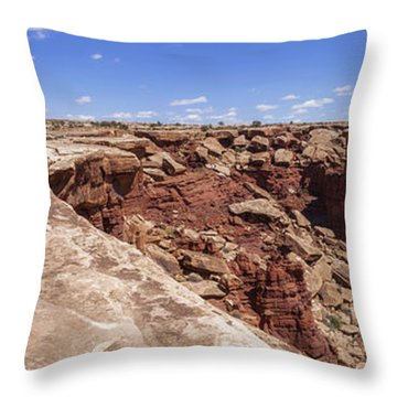 Musselman Arch Throw Pillow by Chad Dutson