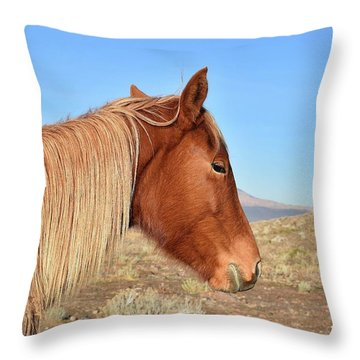 Mustang Mare Throw Pillow