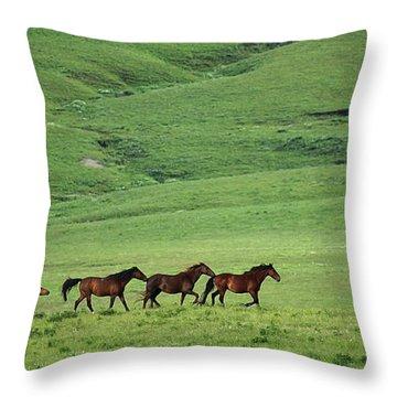 Mustangs Of The Flint Hills Throw Pillow