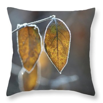 Mustard Yellow And Brown Fall Leaves On Gray Throw Pillow