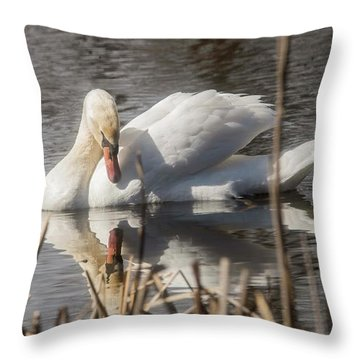 Throw Pillow featuring the photograph Mute Swan - 3 by David Bearden