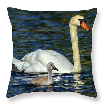 Mute Swan, Cygnus Olor, Mother And Baby Throw Pillow