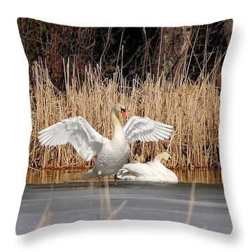 Throw Pillow featuring the photograph Spring Arrival Swans by Debbie Stahre