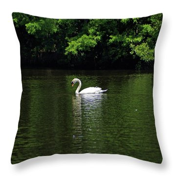 Throw Pillow featuring the photograph Mute Swan by Sandy Keeton