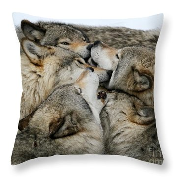 Muzzle Nuzzle Throw Pillow
