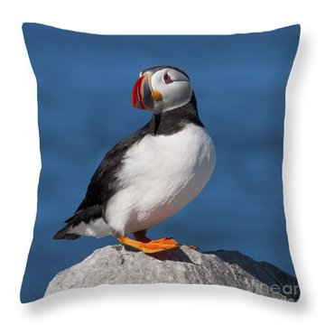 My Best Side.. Throw Pillow
