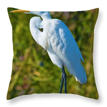 My Better Side Throw Pillow by Betsy Knapp