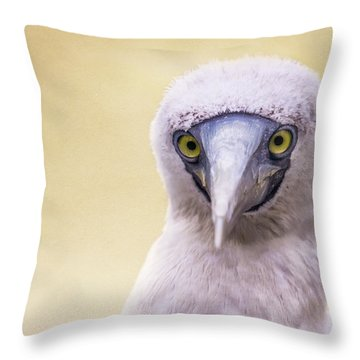 My Booby Buddy Throw Pillow