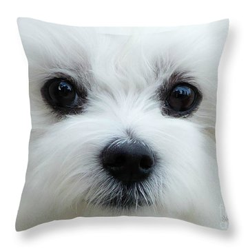 My Boy Throw Pillow