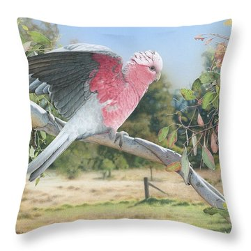 My Country - Galah Throw Pillow
